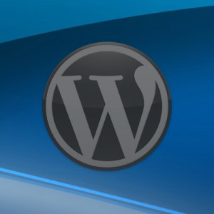 Post image for 11 Quick Tips: Securing Your WordPress Site